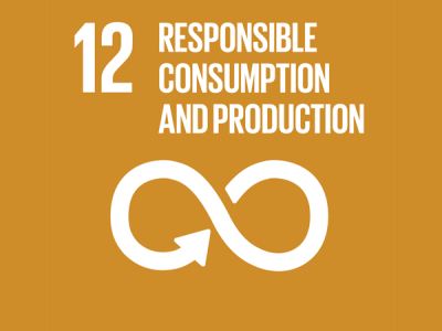 12 responsible consumption and production